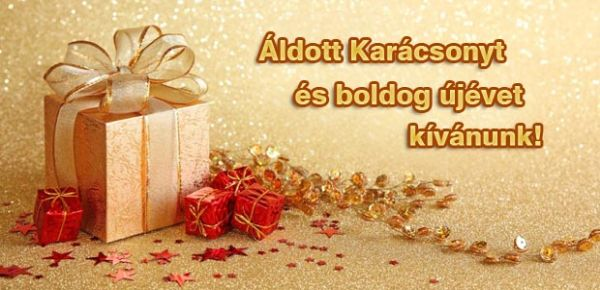 Áldott Karácsonyt és boldog újévet kívánunk!