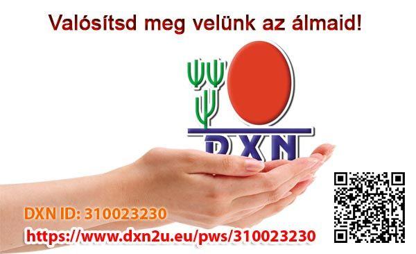A DXN név jelentése