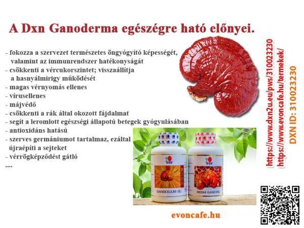Miért fogyasszuk a DXN Ganoderma gyógygombáját?
