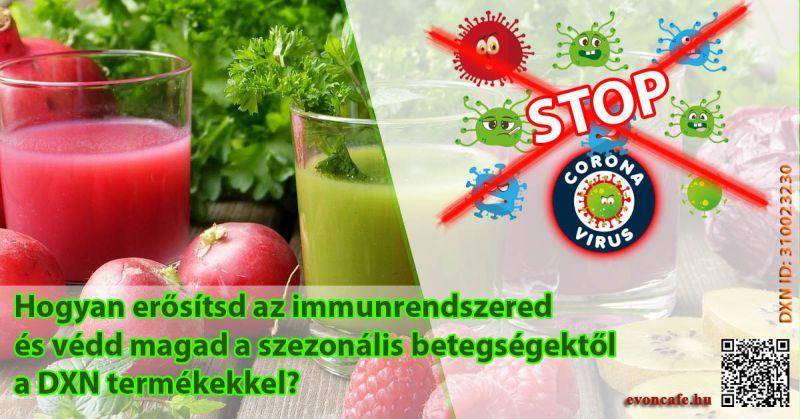 Hogyan erősítsd az immunrendszered a DXN termékekkel?